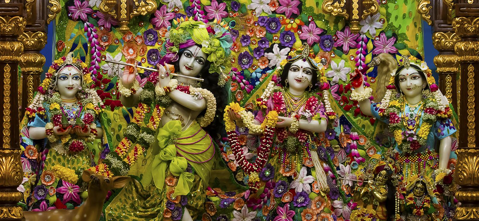 Sri_Sri_Radhagopinath_Ji